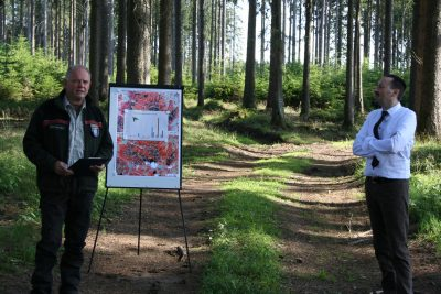 Das Schaubild zeigt die Veränderung im Wald von 2017 -2020